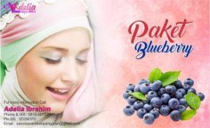 Paket Adelia Salon Muslimah Panggilan Jakarta Blueberry