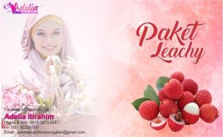 Paket Adelia Salon Muslimah Panggilan Jakarta Leachy